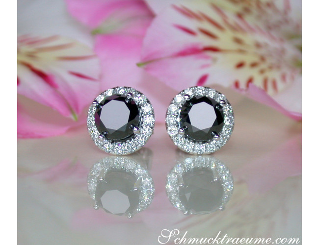Precious Black Diamond Solitaire Stud Earrings