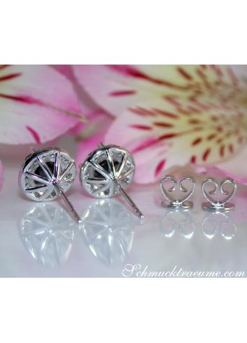Precious Black Diamond Solitaire Stud Earrings
