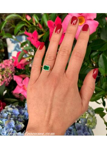 Smaragd Ring mit Brillanten in Gelbgold 585