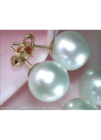 Timeless Southsea Pearl Studs