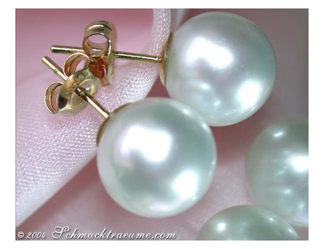 Large Southsea Pearl Studs