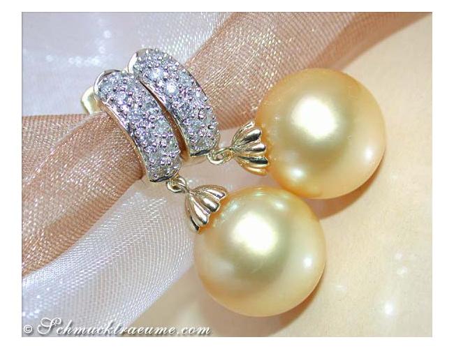 Goldene Südseeperlen Ohrringe