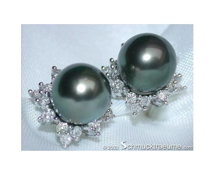 "Pretty ""Star"" Studs with Tahitian Pearls & Diamonds"