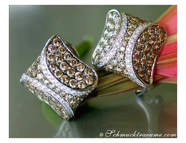 Attractive Brown & White Diamond Studs