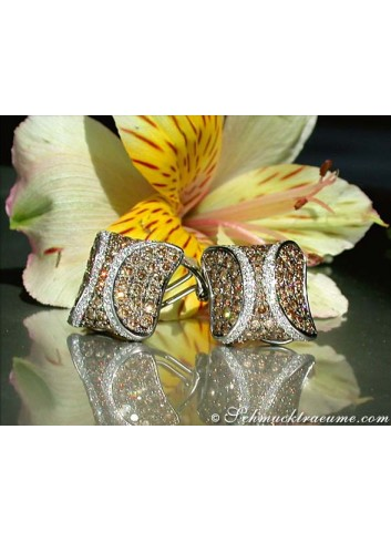 Attractive Brown & White Diamond Studs