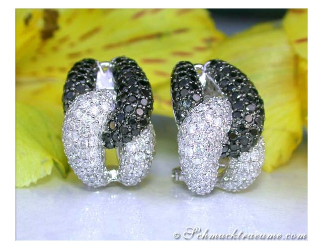 Rich Black & White Diamond Earrings