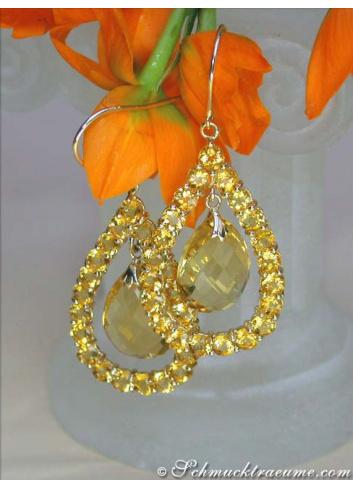 Citrin Ohrhänger in Gelb Gold