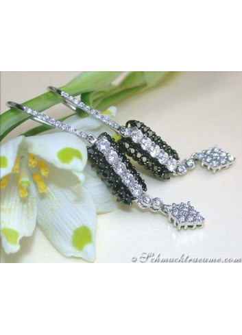 Beautiful Earrings with Black & White Diamonds