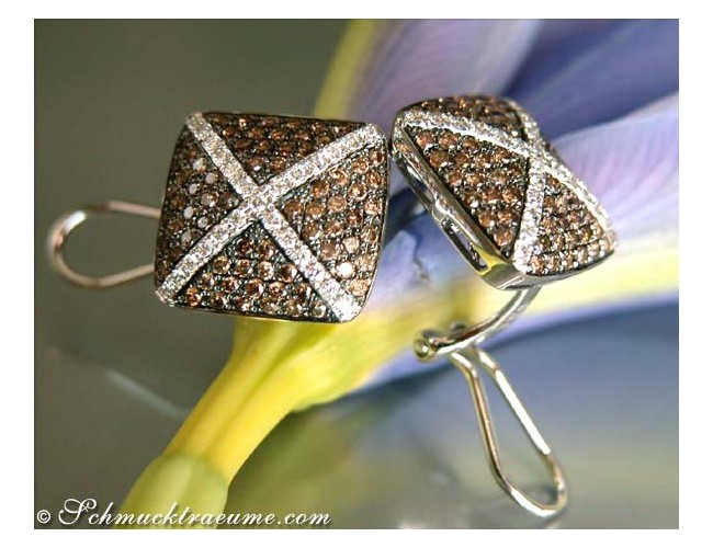 Extraordinary Brown & White Diamond Stud Earrings