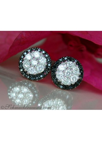 Pretty Black & White Diamond Studs