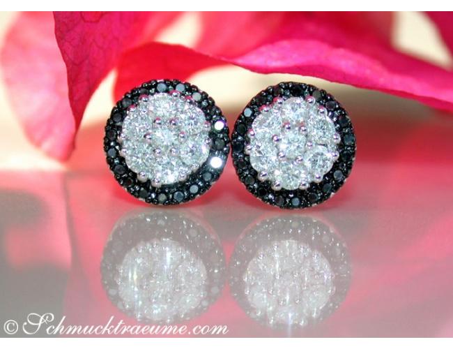 Pretty Black & White Diamond Studs