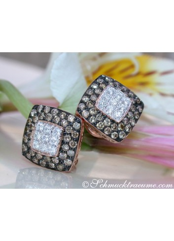 Timeless Square Studs with brown & white Diamonds